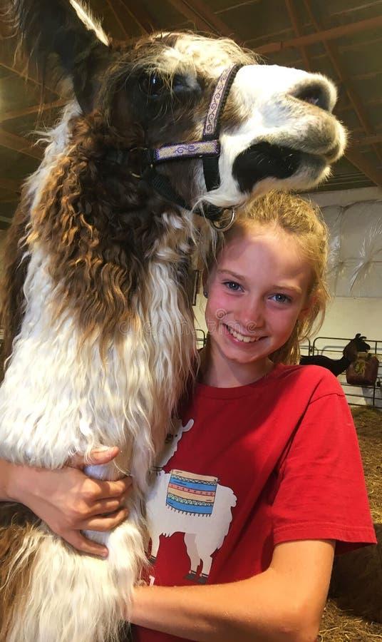 Girl Hugging Friendly Black and White Llama royalty free stock image