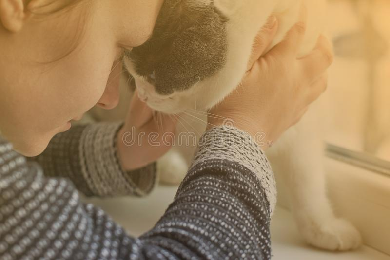 The girl hugs her cat, close-up, toned, the theme of friendship with pets stock image