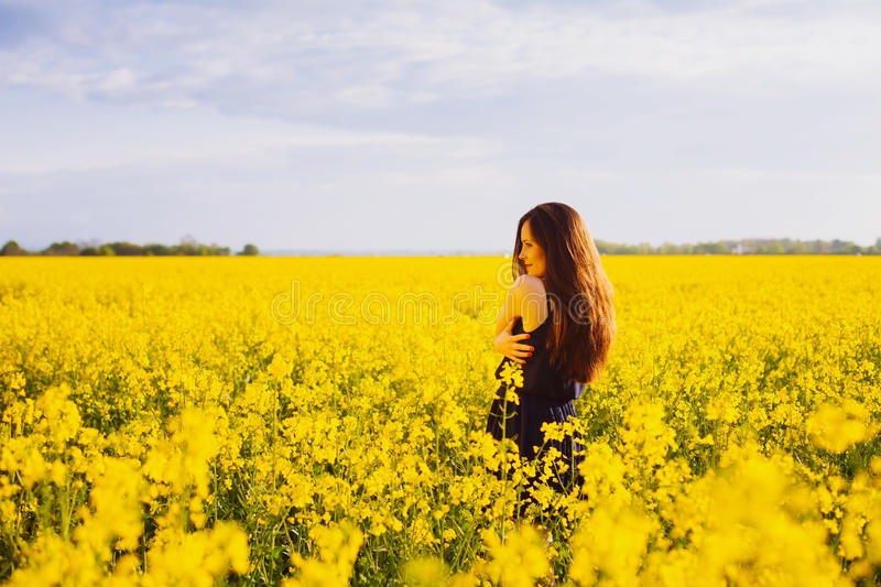 Girl hugs herself on rapeseed meadow. Rear view of young woman with long hair hugging herself on yellow blooming rapeseed field royalty free stock image