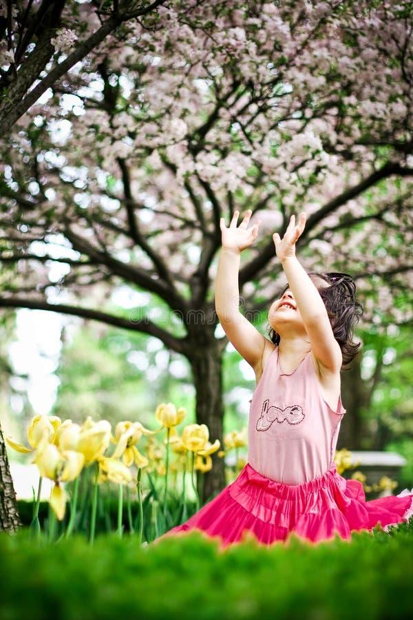 Free Girl In Flower Garden Stock Photography - 5193422