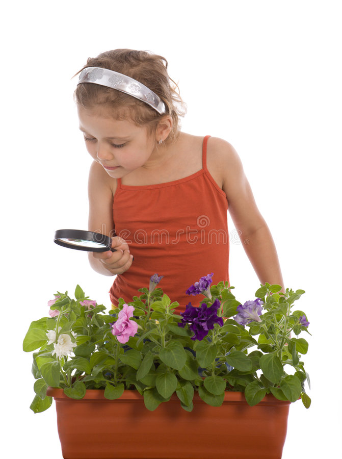 Free Girl Is Researching A Flower Royalty Free Stock Images - 5259639