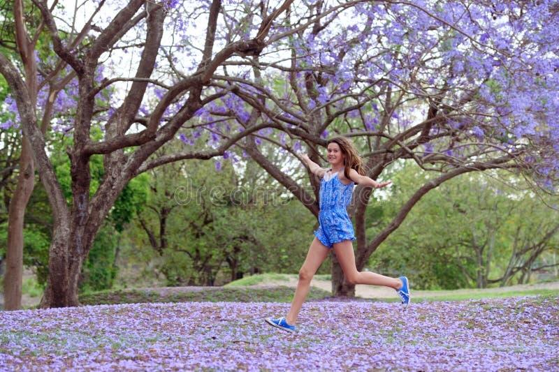 Girl and Jacaranda Tree stock photos