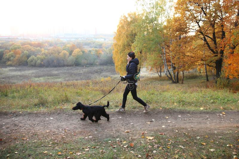 Girl Jogging with a dog in the autumn Park. Moscow.15.09.2018 royalty free stock photo