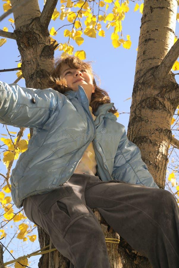 Free Girl Joy Tree Autumn 2 Royalty Free Stock Image - 3387726