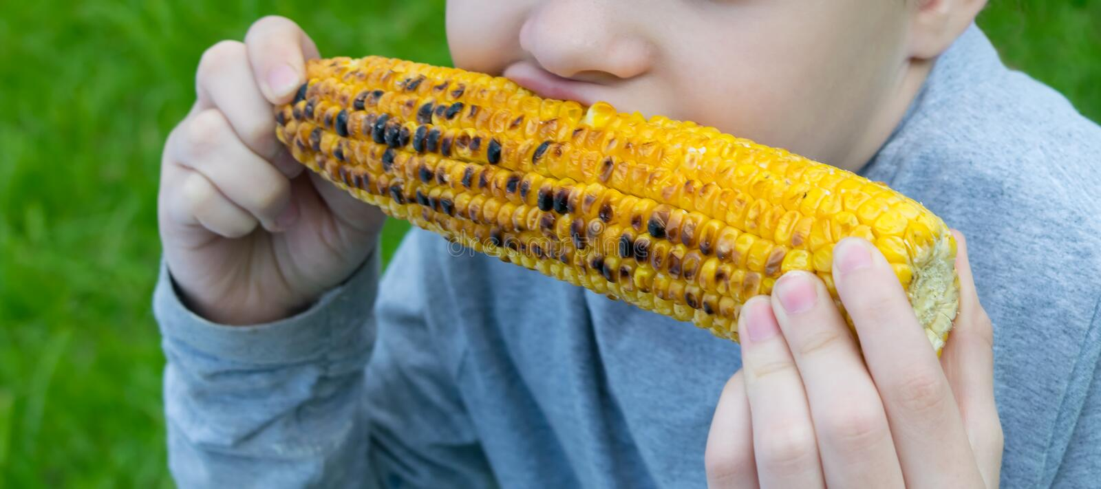 The girl keeps  hands an ear of corn and bites with appetite, against the green lawn. close up. The girl keeps hands an ear of corn and bites with appetite stock photos