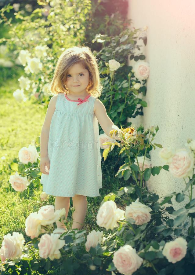Girl kid with cute smile standing at blossoming rose flowers. On sunny day on floral environment. Summer vacation concept. Child and happy childhood royalty free stock photography