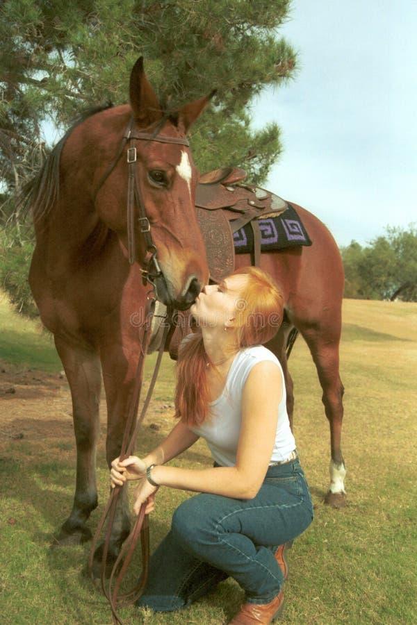 Girl kisses horse stock photos
