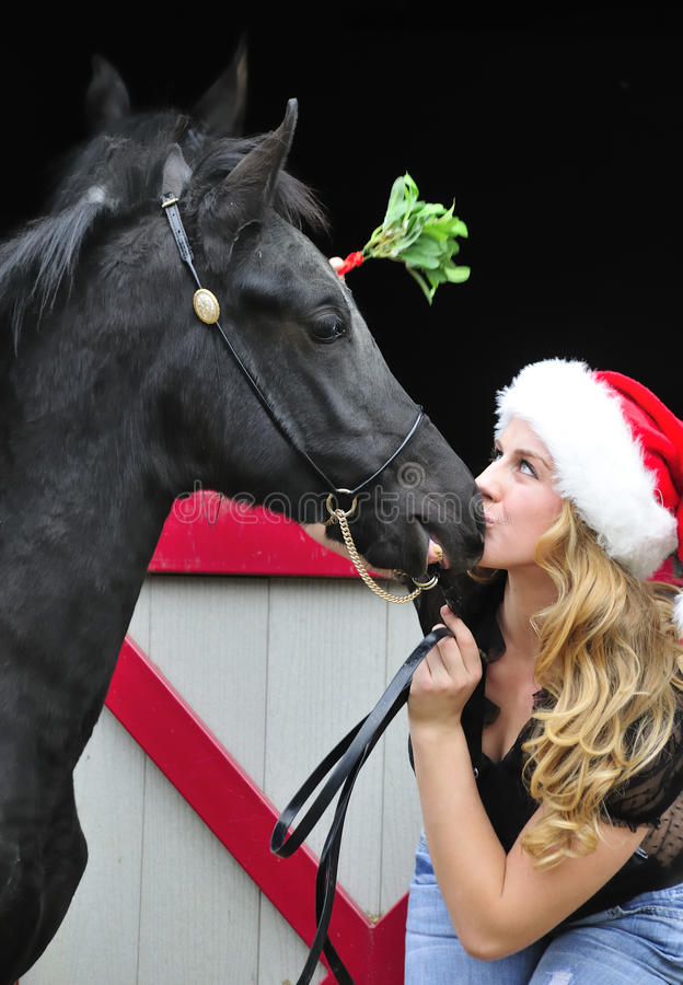 A girl kissing her horse stock image