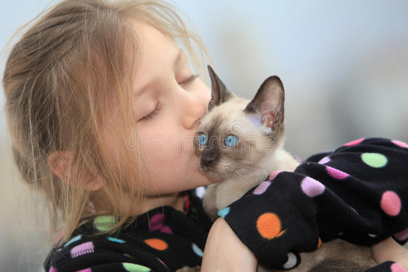 Girl with kitten. Portrait of a smiling little girl with kitten stock photo