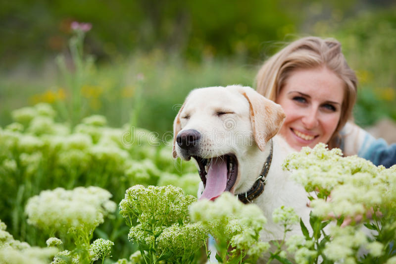 Download Girl with labrador stock photo. Image of handsome, female - 10026604