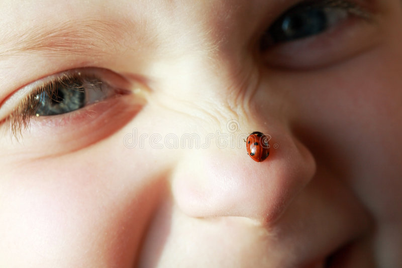 Girl with ladybird royalty free stock photography