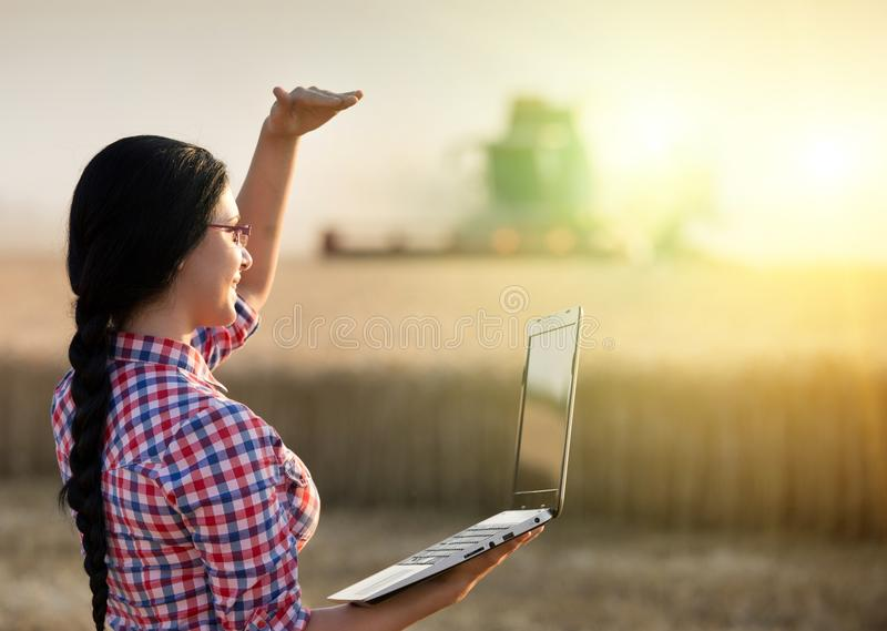 Girl with laptop and combine harvester stock photo