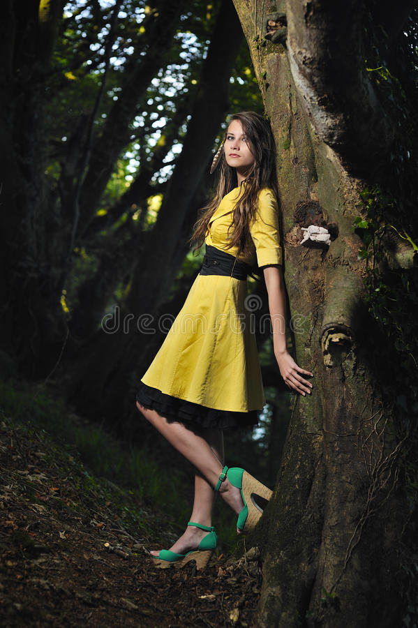 Download A Girl Leaning Against A Tree. Stock Photo - Image of tree, woman: 26814864