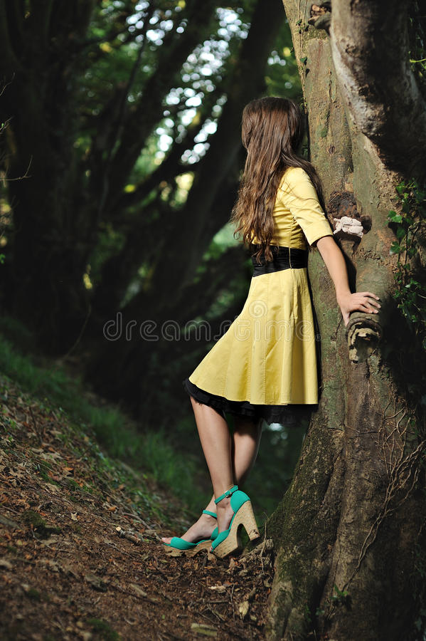 Download A Girl Leaning Against A Tree In A Forest. Stock Image - Image of woman, gaze: 26814857