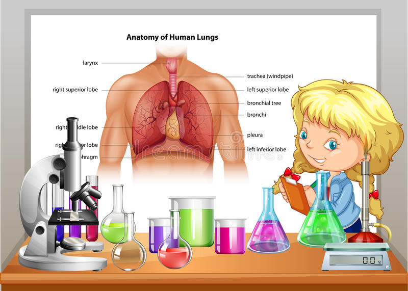 Girl learning in science class stock illustration
