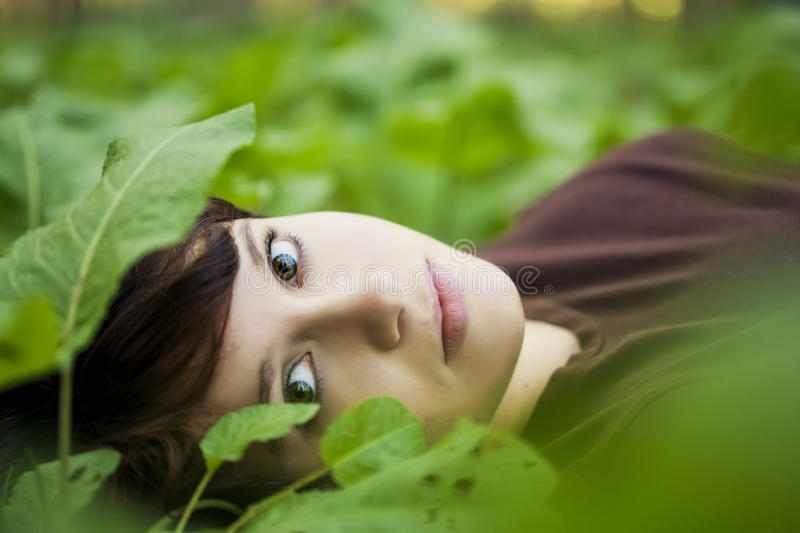 Girl between leaves stock photography