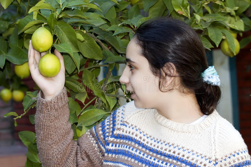 Download Girl with lemon tree stock photo. Image of growth, ecology - 24670332