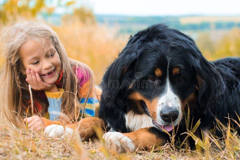 Girl lies next to big dog on autumn walk. Berner Sennenhund royalty free stock image