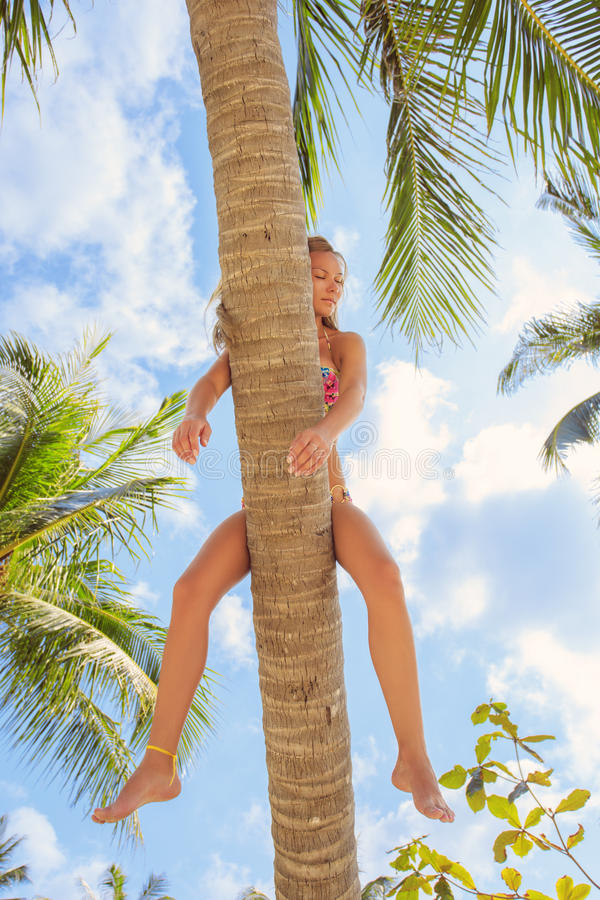 Girl lies on the palm tree. royalty free stock photography