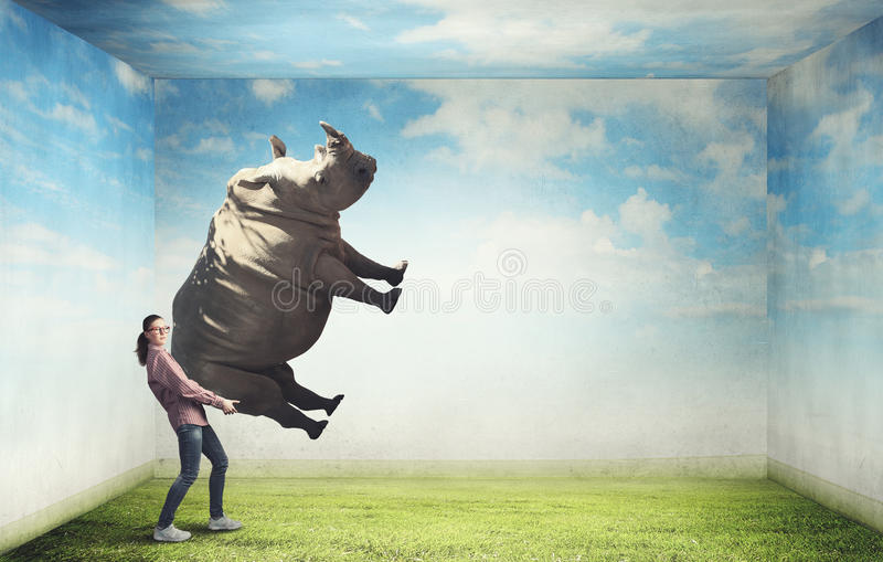 Girl lifting rhino stock images