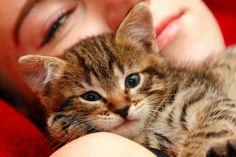 Girl and little cat. Love between girl and little tabby cat royalty free stock images