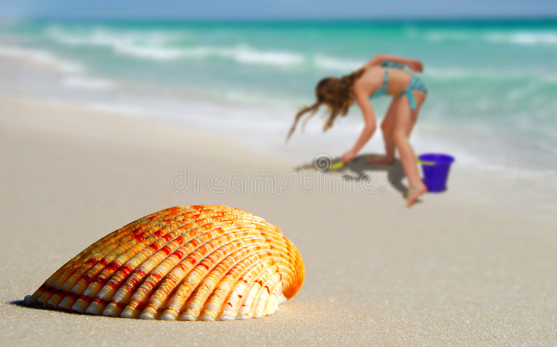 Download Girl By Lone Seashell On Beach Royalty Free Stock Photos - Image: 5939238