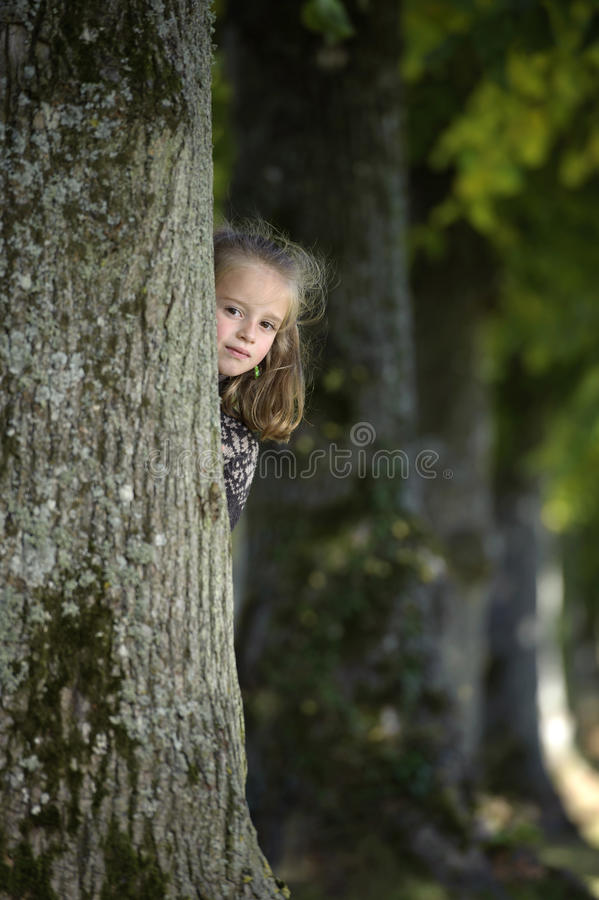 Girl looking from behind a tree. Little girl looking from behind a tree royalty free stock photo