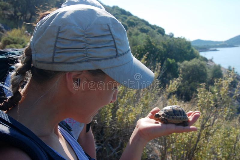 The girl looks at the baby turtle royalty free stock photos