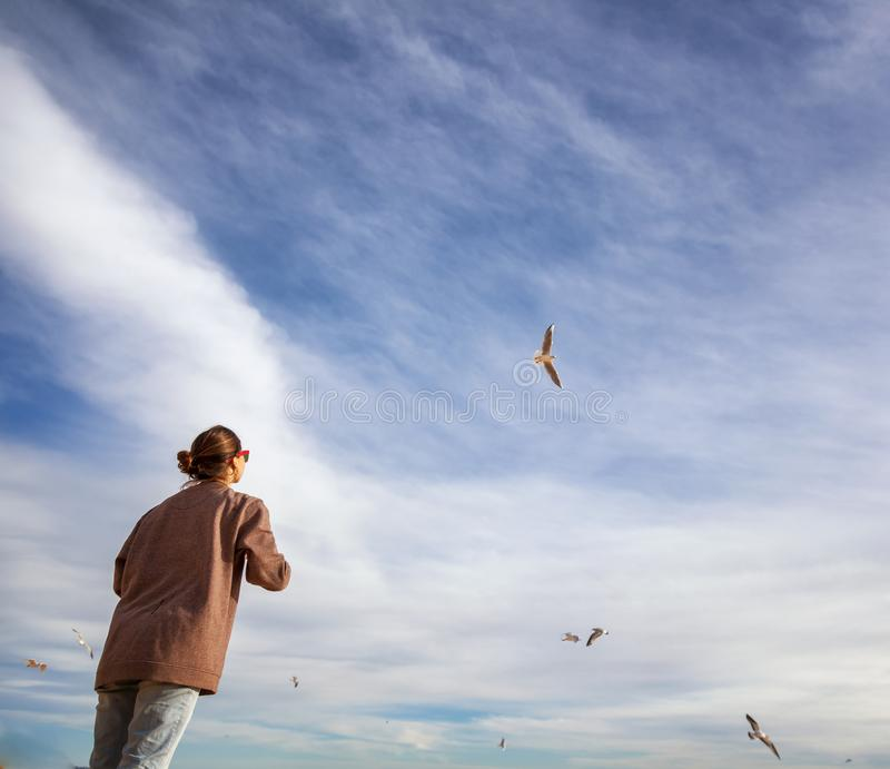 A girl looks at the sky with clouds and watches flying seagulls stock photos