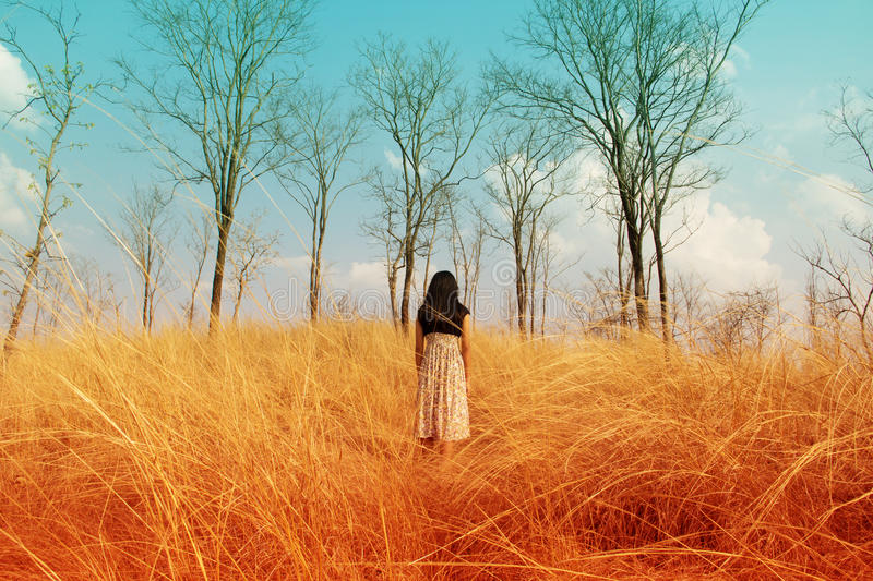 Girl lost in the woods. Lonely girl lost in the woods stock photography