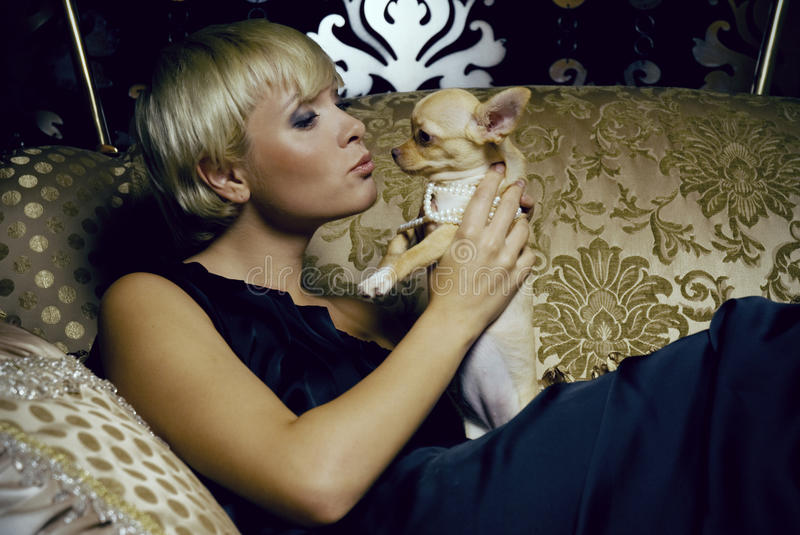 Girl in luxury interior with chihuahua royalty free stock photo