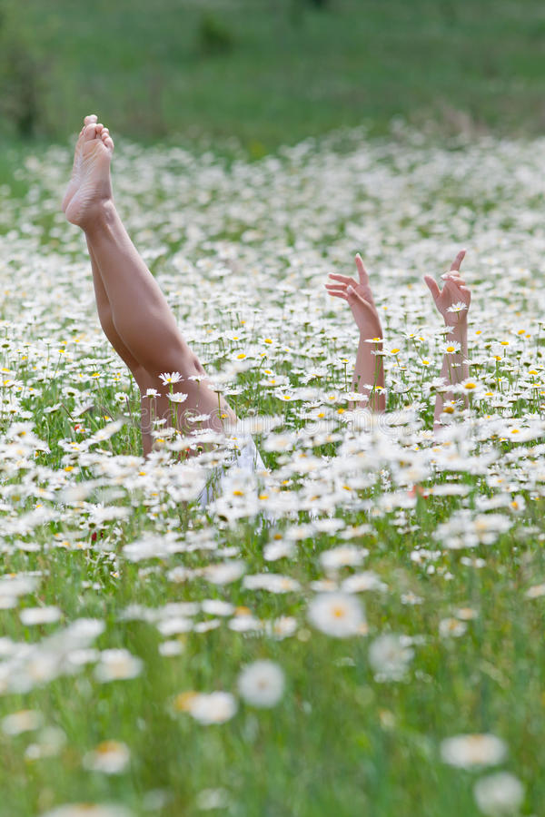 Girl lying on back in chamomile field royalty free stock photo