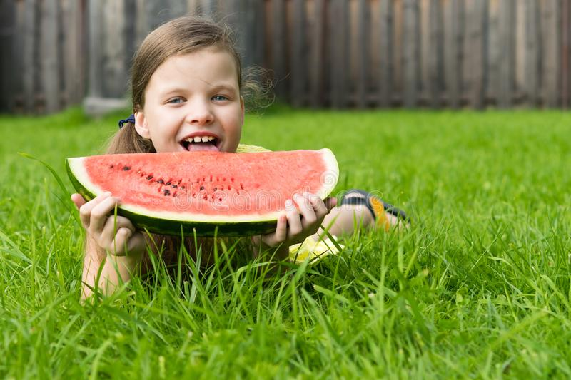 A girl lying on the grass holds in her hands in front of herself a big red slice of watermelon and licks it royalty free stock images