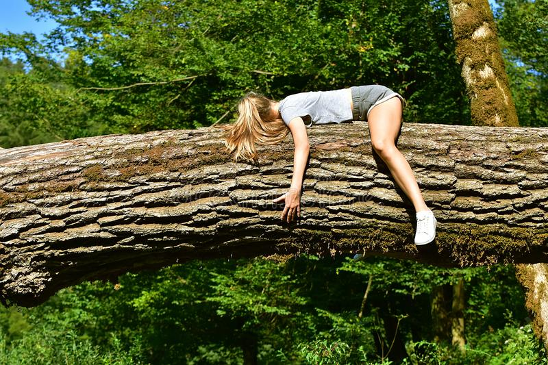 Download Girl lying on tree trunk stock image. Image of arms, wrapped - 99840147