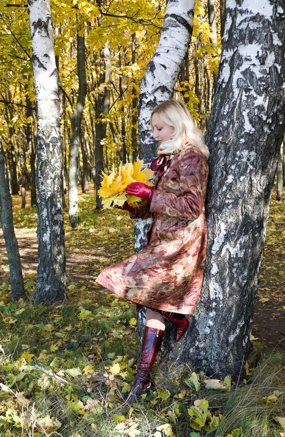 Girl with a maple leaf. Portrait of a girl with a maple leaf in autumn park royalty free stock photos