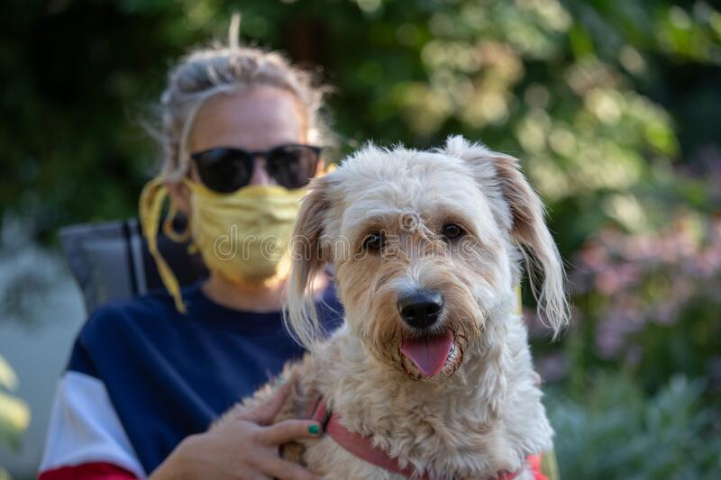 Girl with mask holding dog in lap in garden stock photos
