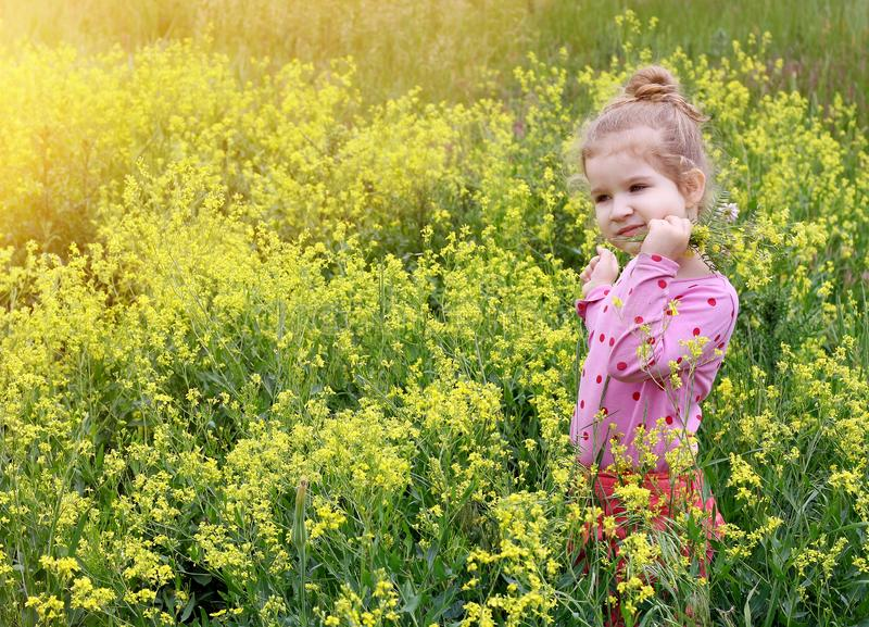 Girl in the meadow royalty free stock image