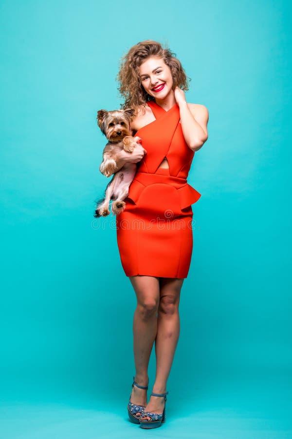 Beautiful And Cute York Terrier Dog: Beautiful Girl Holding Small Cute York Terrier Dog Stock