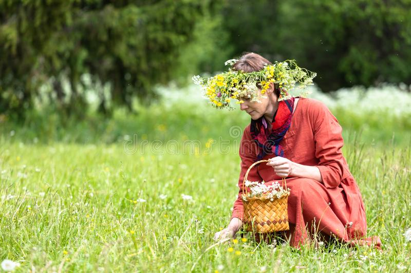 A girl in a national costume and a wreath on her head collects berries in a basket, on a green lawn in.  royalty free stock photo