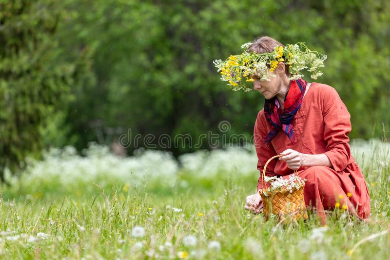 A girl in a national costume and a wreath on her head collects berries in a basket, on a green lawn in.  stock photos