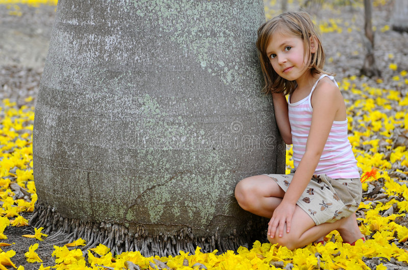 Download Girl Near The Big Tree Surrounded By Yellow Flower Stock Image - Image: 8877571