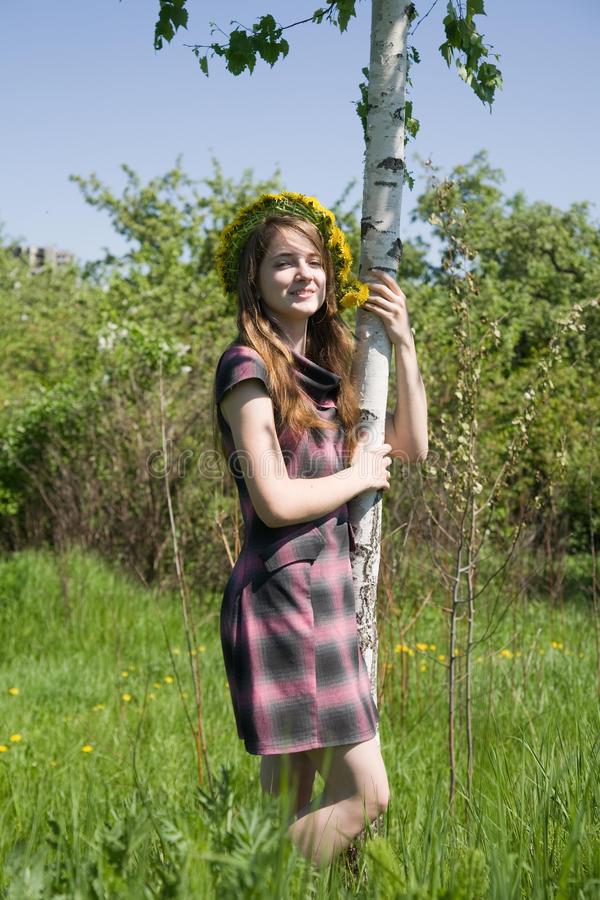 Girl near birch royalty free stock photos
