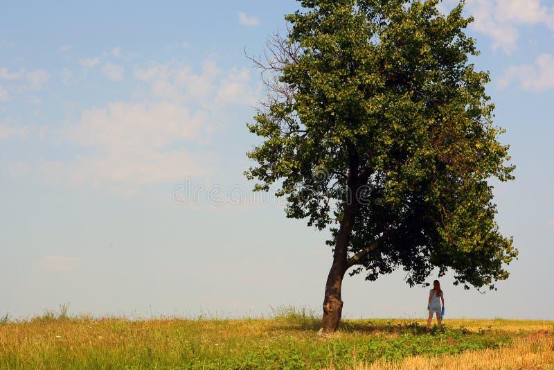 Girl Near A Tall Tree Stock Photos