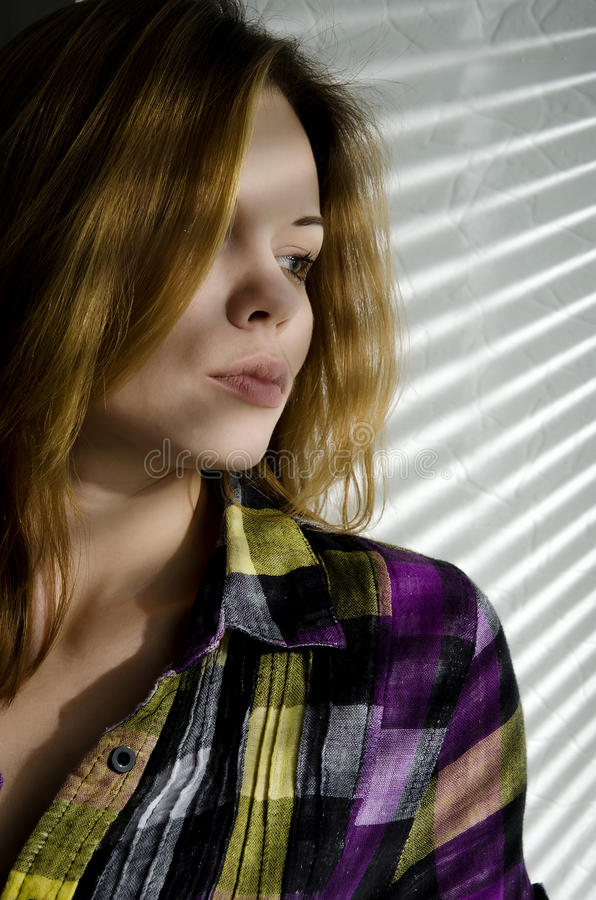 Girl near the window. Beautiful girl near the window closed louver on a sunny day royalty free stock image
