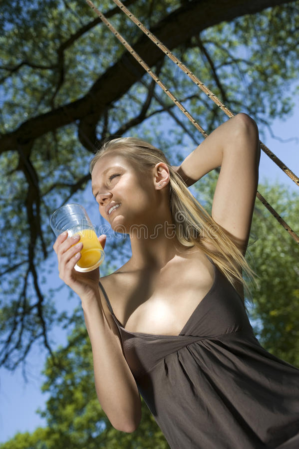 Free Girl On The Swing Royalty Free Stock Images - 10384619