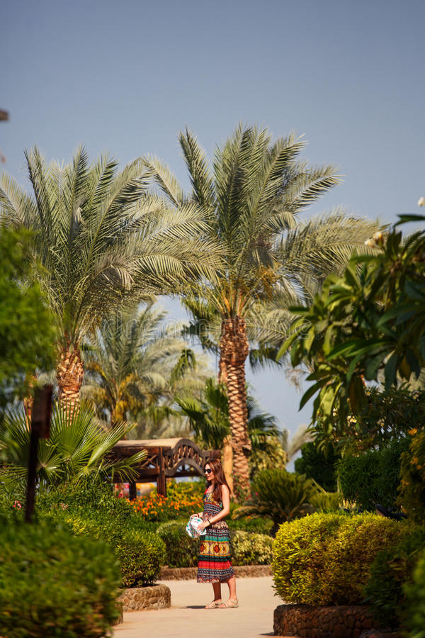 The girl in palm trees stock photography