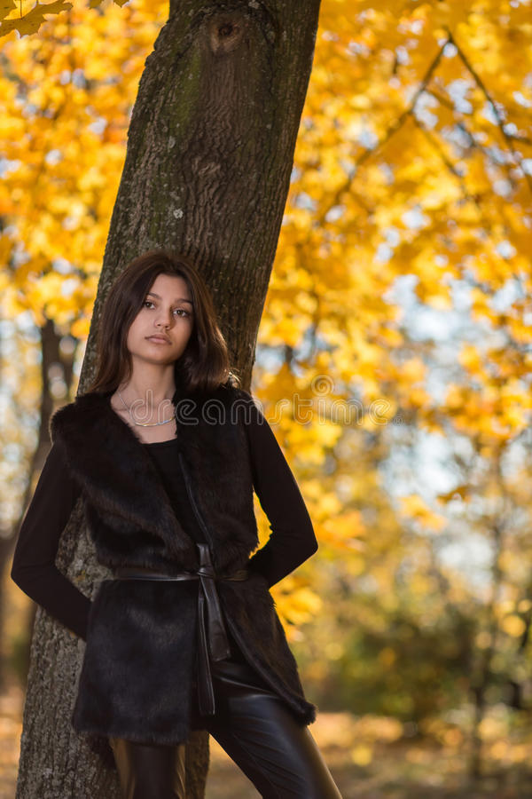 Girl in the park in autumn stock photography