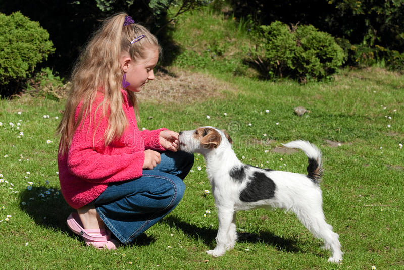Download Girl with pet dog stock photo. Image of child, childhood - 13657582