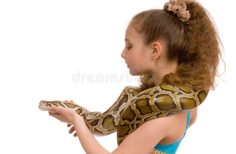 Download Girl with pet python stock photo. Image of female, community - 8576146