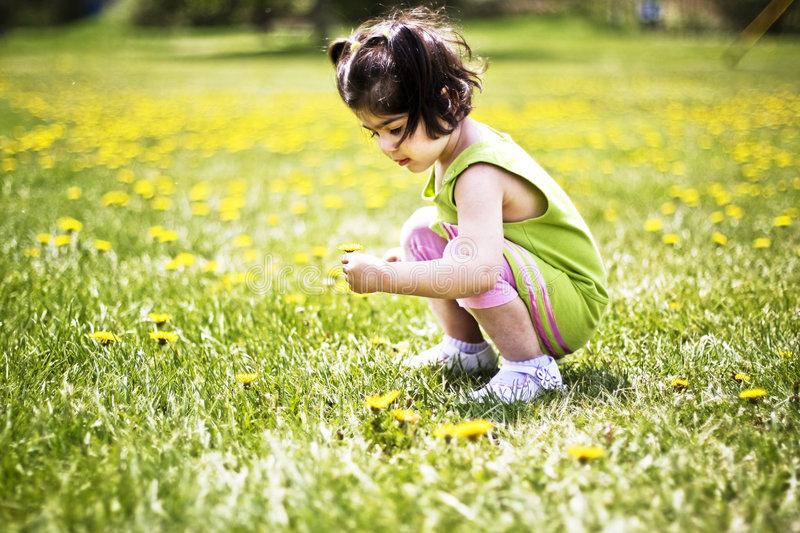 Girl picking a flower stock images